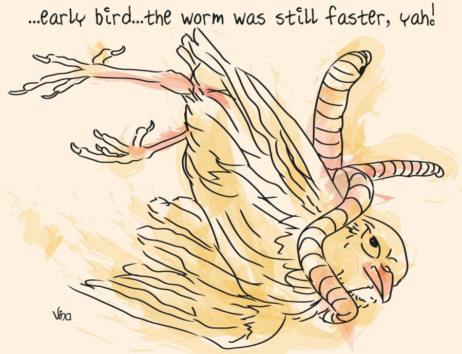 a_early_bird